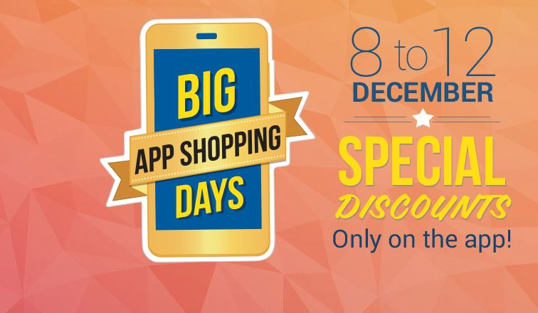Flipkart Big App offers
