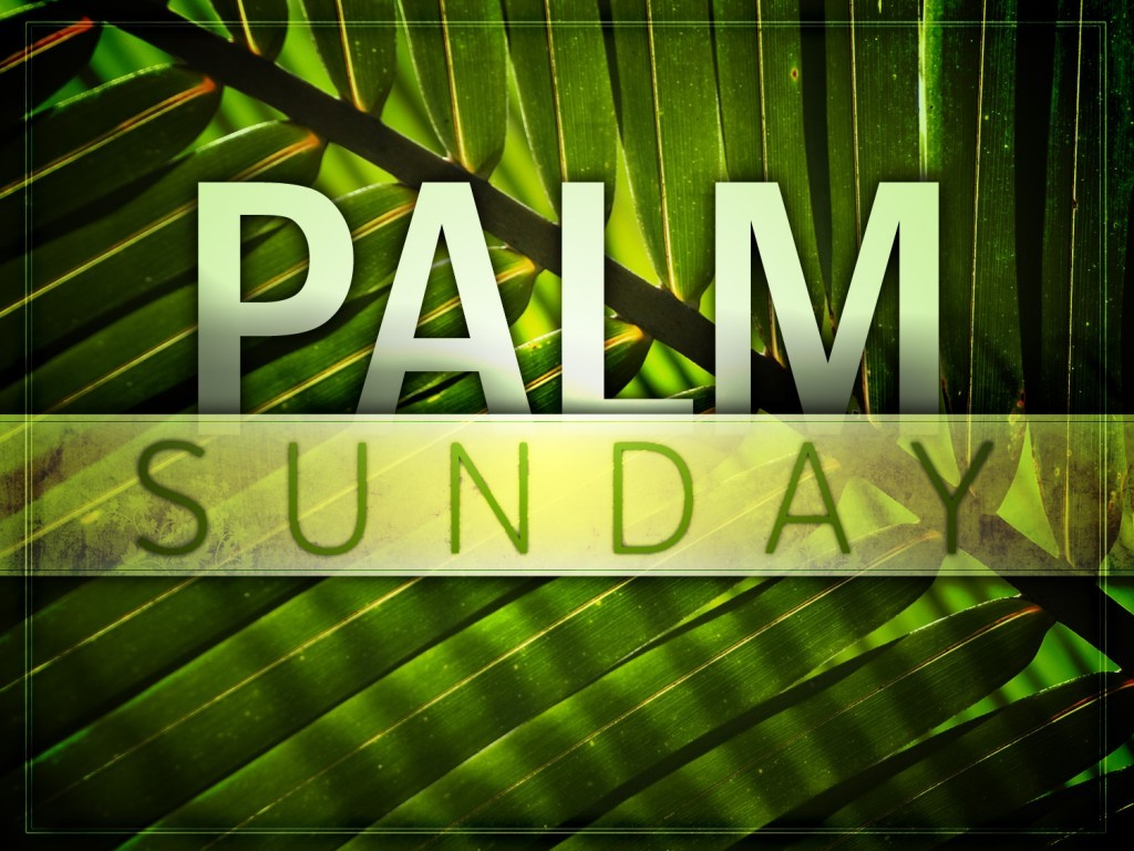 Palm Sunday 2015 images