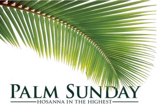 Palm Sunday 2015 pictures