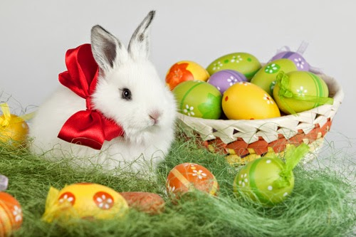 Happy Easter 2019 quotes, pictures, wishes, greetings, images, wallpapers, SMS and messages